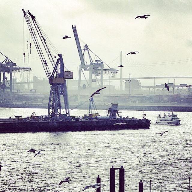 Moewen Hafen