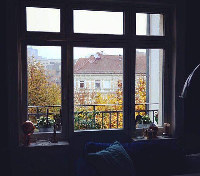 Definitiv Herbst  Aber immerhin etwas heller durch die Zeitumstellung - Guten Start in die Woche ️
