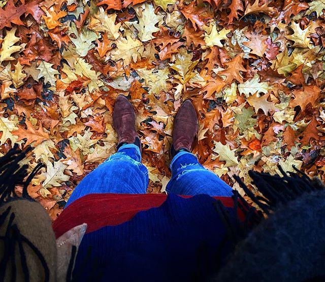 Im Wald steh  Das Leben kann manchmal so richtig beschissen sein und trotzdem fallen mir grad jetzt die diesjährigen Farben des Herbstes so extrem auf #Einbildung?