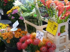 Blumen Fischmarkt