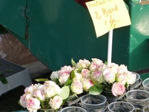 Blumen Rosen Fischmarkt